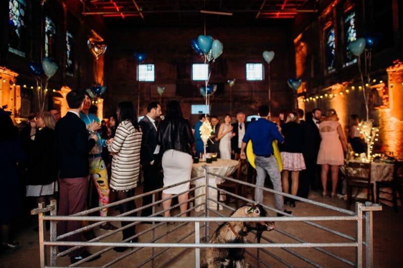 asylum pastafarian london wedding-19