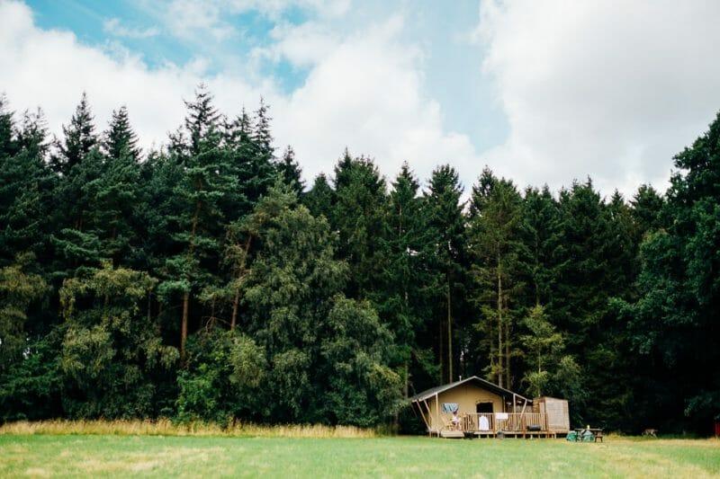camp katur woodland lesbian wedding-42